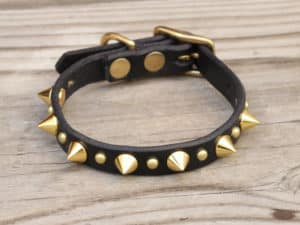 toy spiked leather dog collar