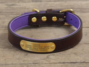 1 custom basic nameplate collar