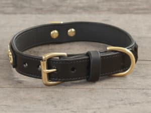 1 diamond jack dlx collar 080315