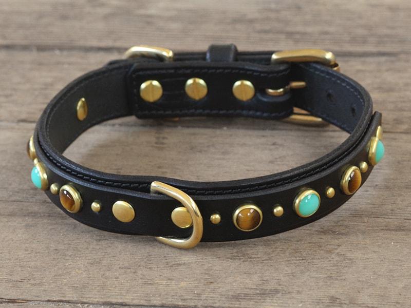 1 diego dlx collar 080215