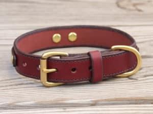 1 louis leather dog collar 090315b