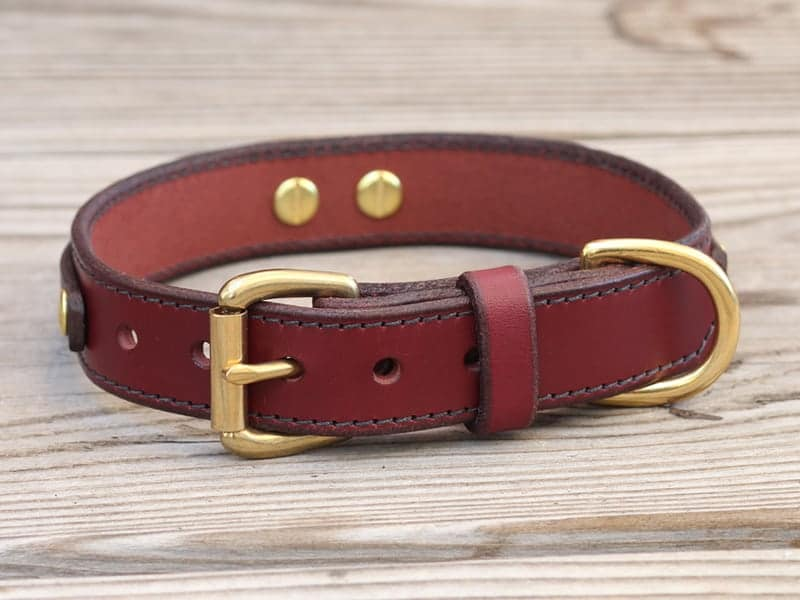 1 louis leather dog collar 090315b