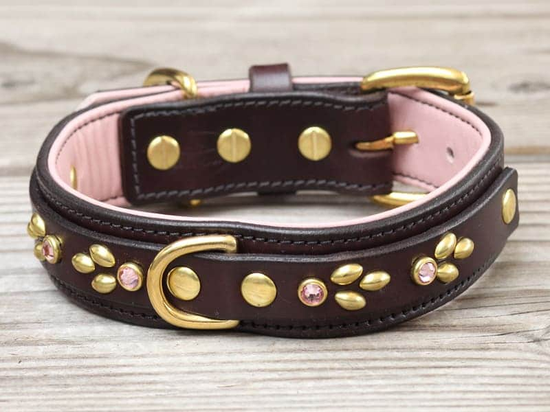 125 isabella leather dog collar 0825152