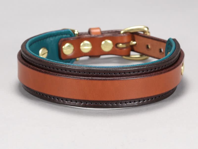 custom leather collar for large breed dogs
