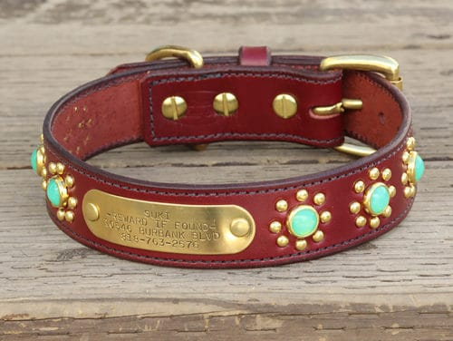 "1.25"" Suki dog collar with nameplate"