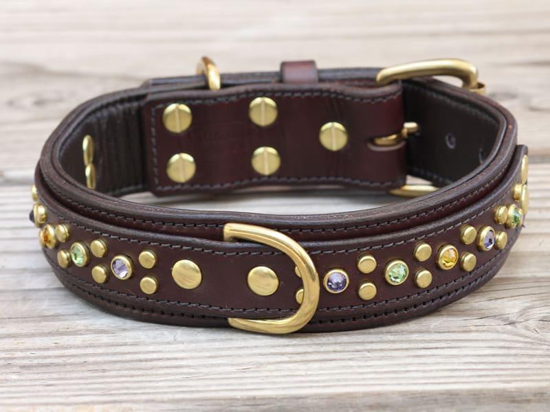 15 artemis collar 082215c