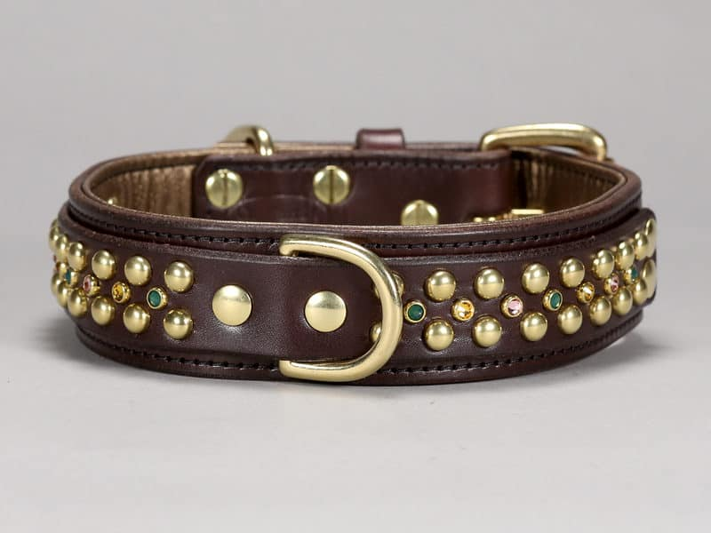 Hollywood Dog Collars