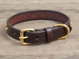 34 artemis collar 081515b
