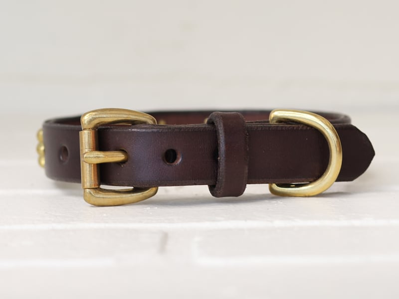 34 hollywood leather dog collar