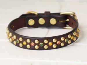 34 hollywood leather dog collar