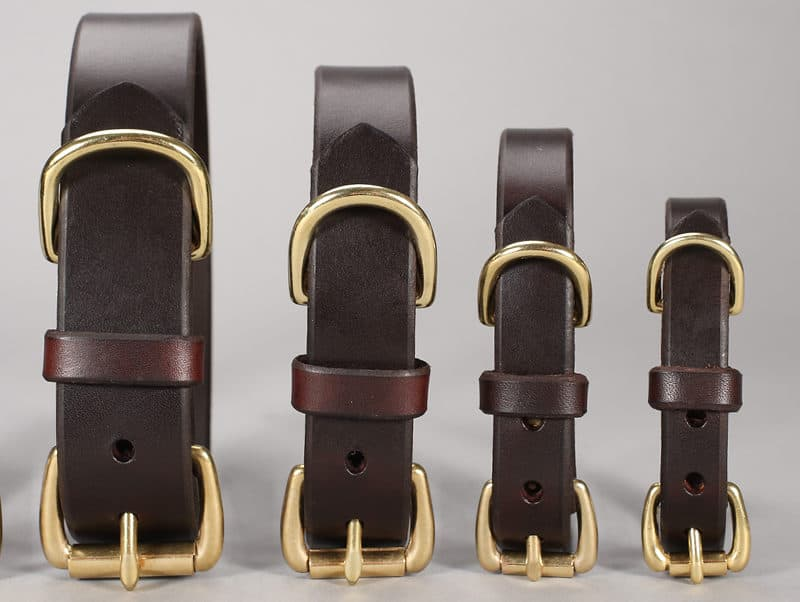 basic leather dog collars