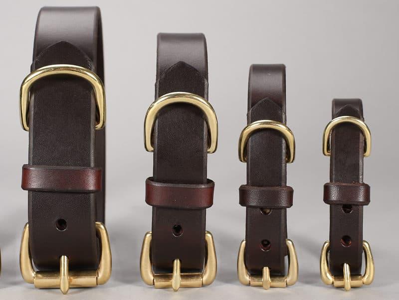 basic leather dog collars