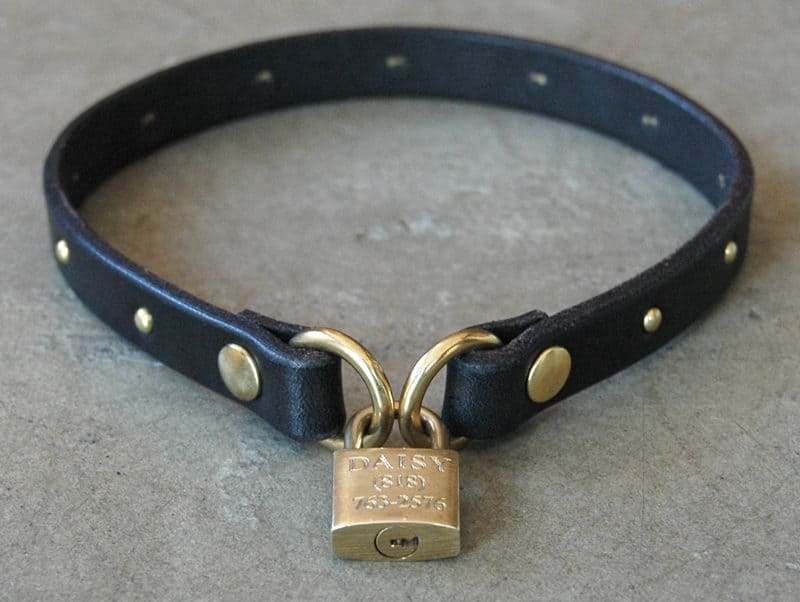 leather and brass ID collar and Padlock ID tag