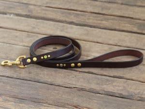 artemis leash 073015