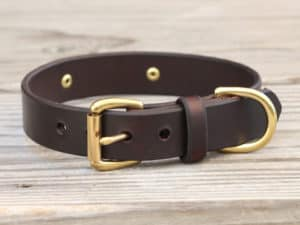 1 basic nameplate collar 2
