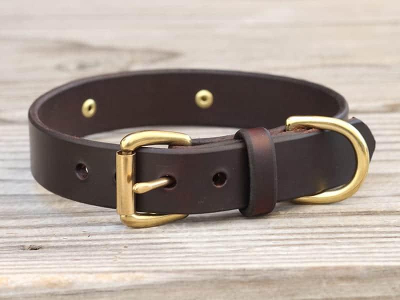 1 basic nameplate collar 2