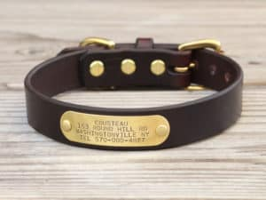 1 basic nameplate collar