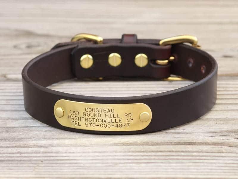 1 basic nameplate collar