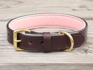 1 custom basic collar