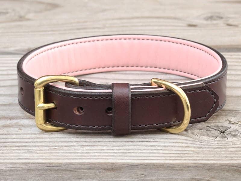 1 custom basic collar