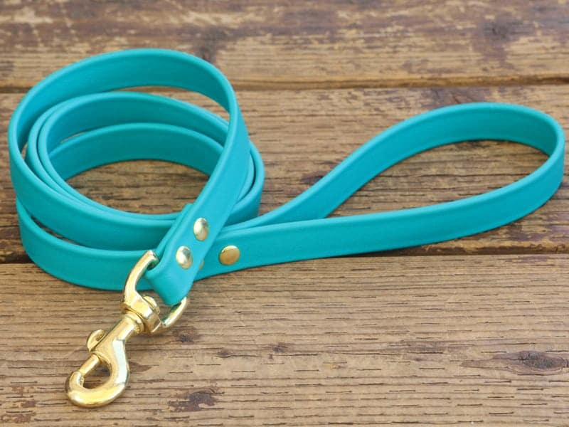 vegan basic leash teal